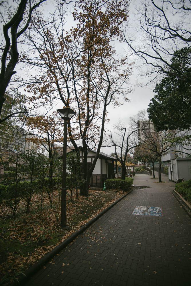 f:id:fukagawa1953:20181206114716j:plain