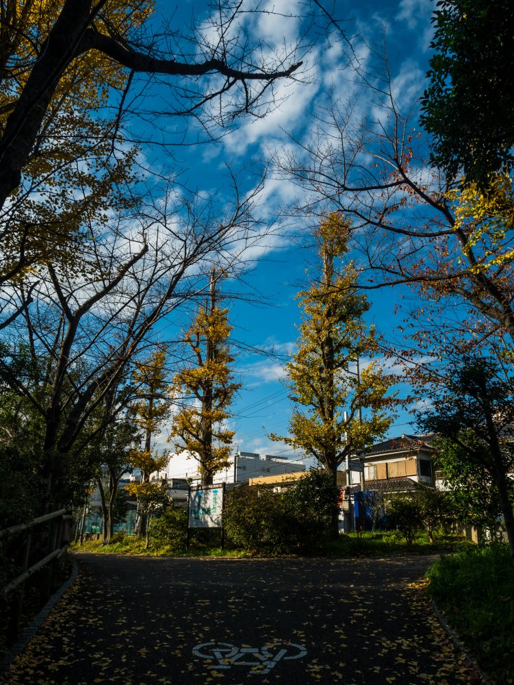 f:id:fukagawa1953:20181206163049j:plain