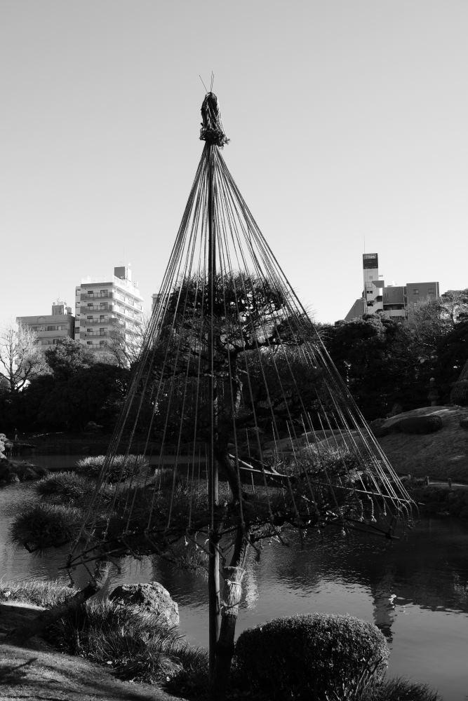 f:id:fukagawa1953:20190102191720j:plain