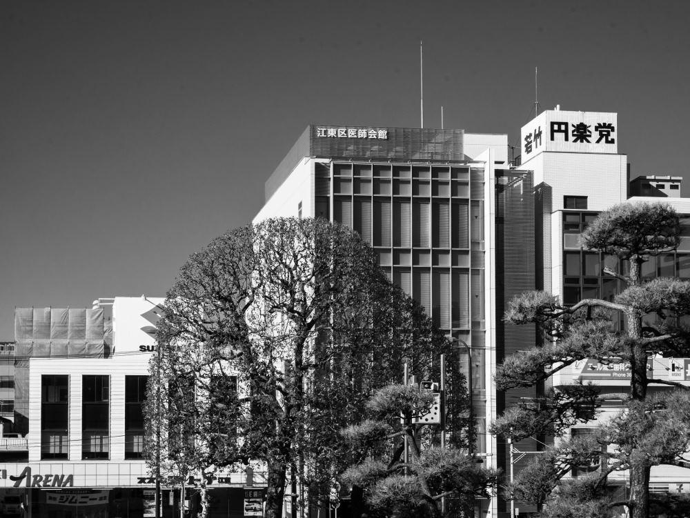 f:id:fukagawa1953:20190119075427j:plain