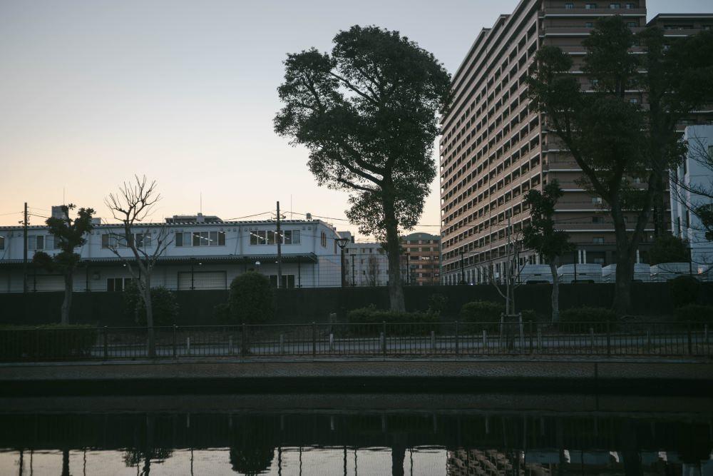 f:id:fukagawa1953:20190121195108j:plain