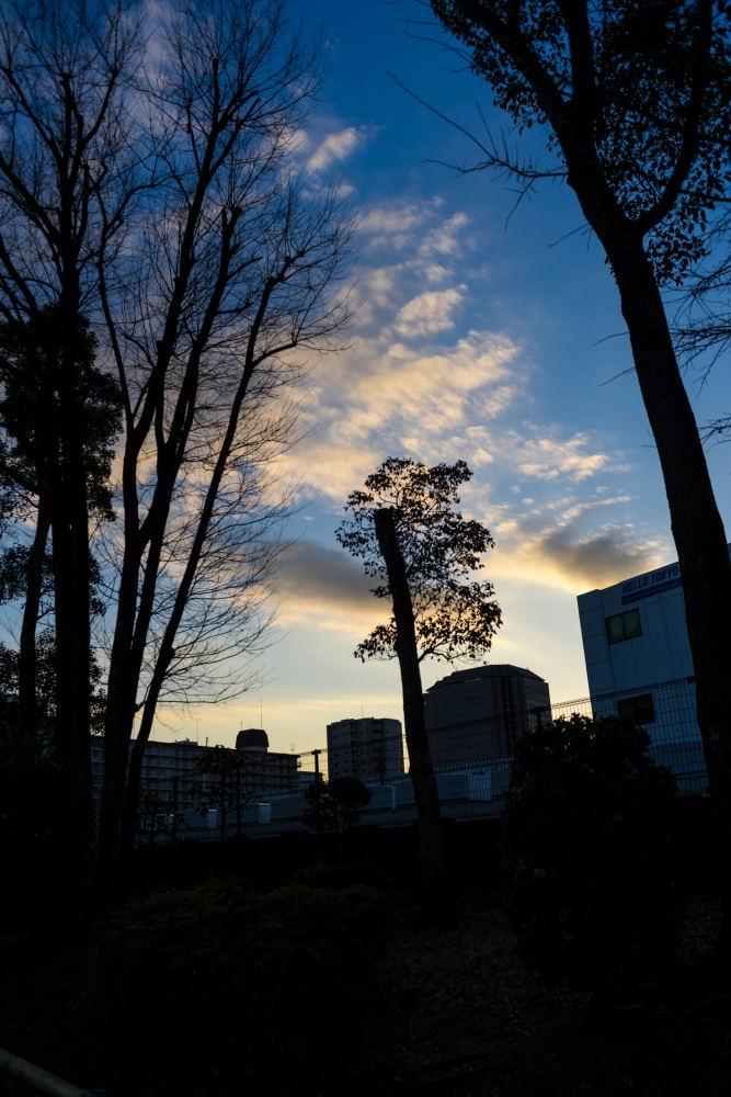 f:id:fukagawa1953:20190122184819j:plain