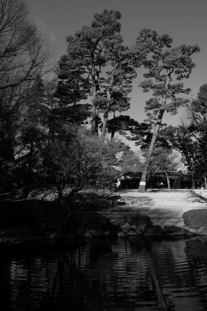 f:id:fukagawa1953:20190123082048j:plain