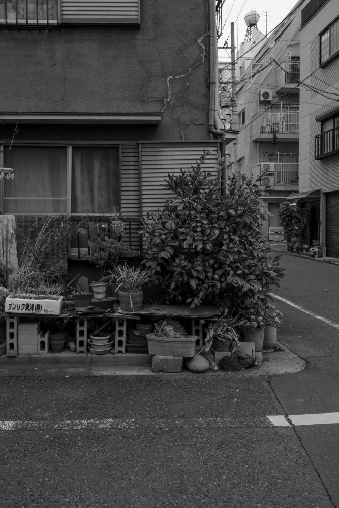 f:id:fukagawa1953:20190212173622j:plain