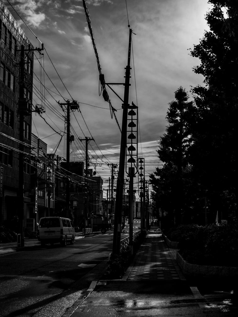 f:id:fukagawa1953:20190522172427j:plain