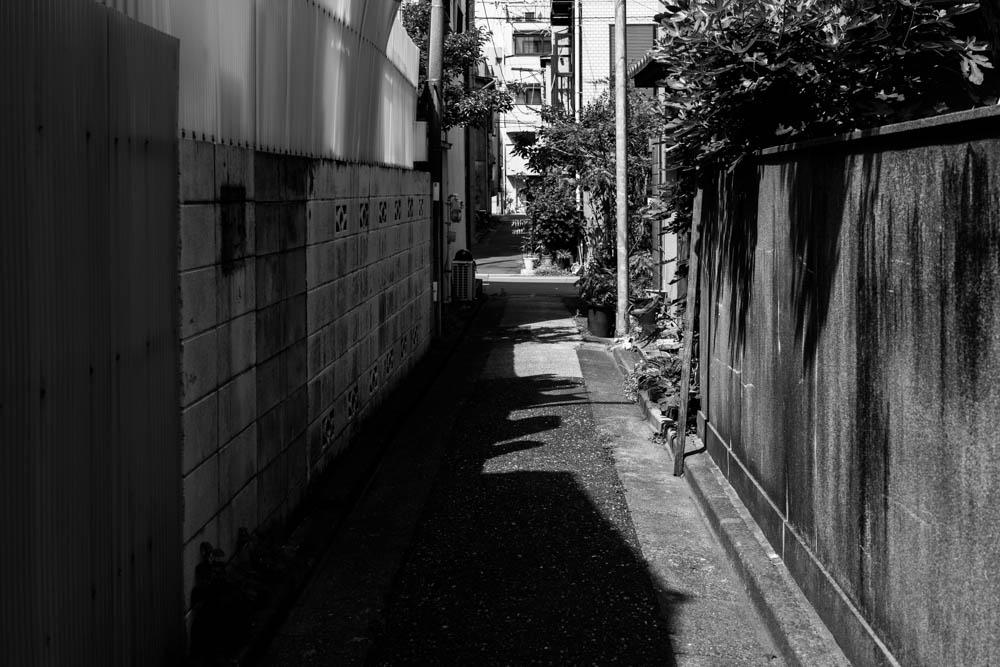 f:id:fukagawa1953:20200514080756j:plain