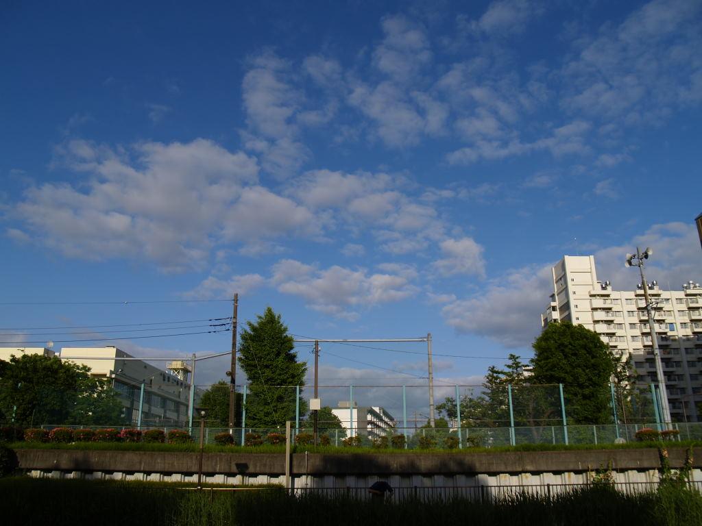 f:id:fukagawa1953:20200524192705j:plain