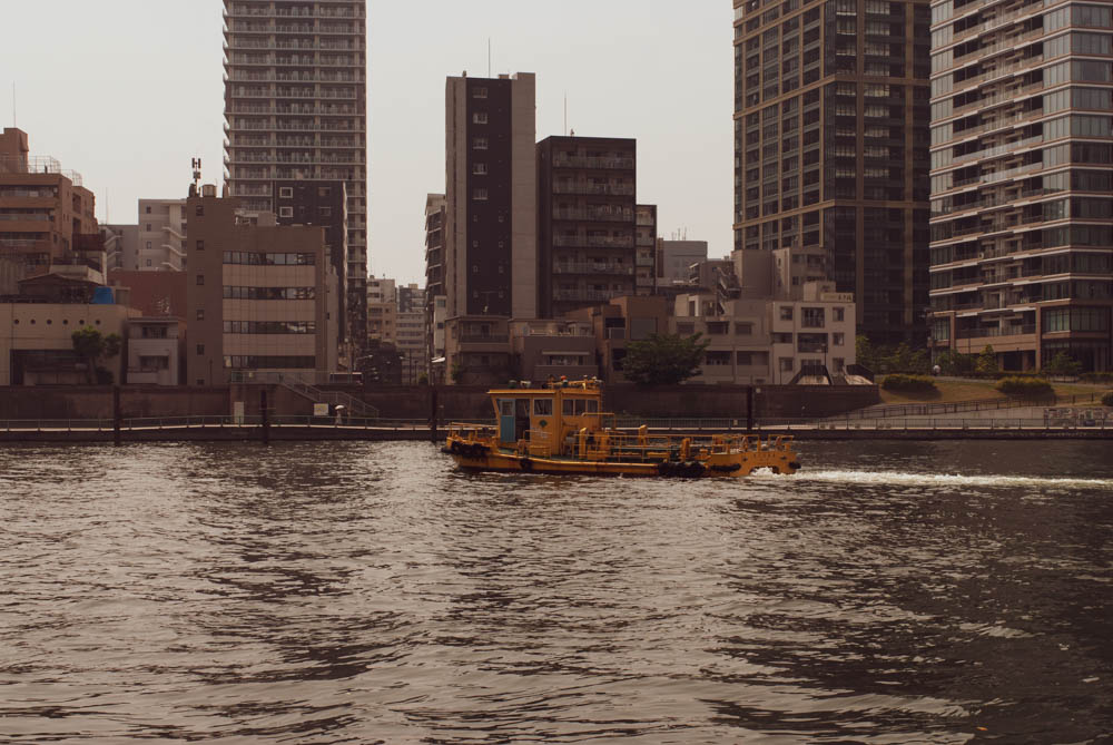 f:id:fukagawa1953:20200604173839j:plain