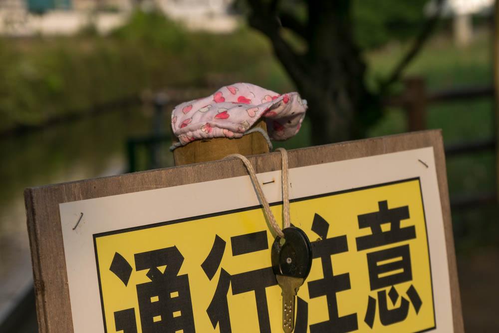 f:id:fukagawa1953:20200605063518j:plain