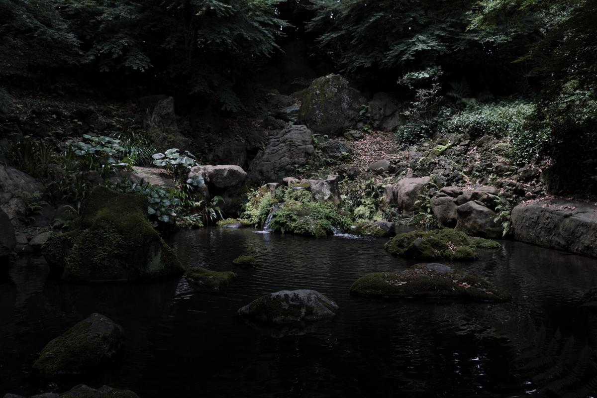 f:id:fukagawa1953:20200622215046j:plain