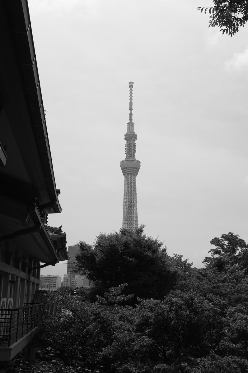 f:id:fukagawa1953:20200712145602j:plain