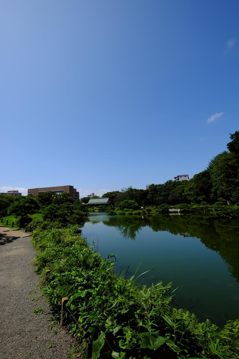 f:id:fukagawa1953:20200719153141j:plain