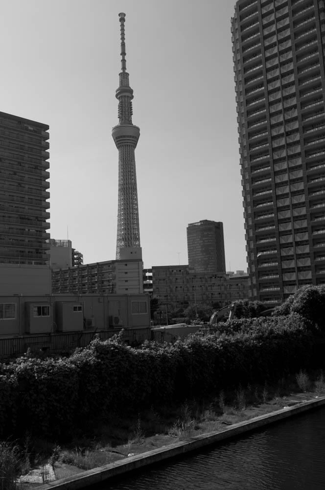 f:id:fukagawa1953:20200803160406j:plain