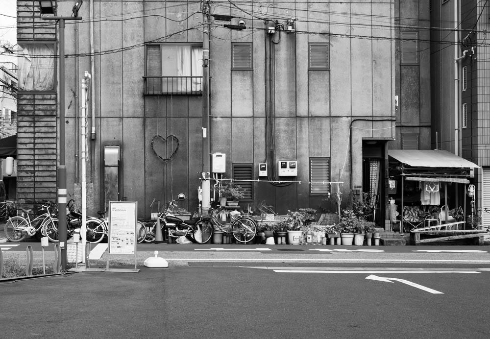 f:id:fukagawa1953:20200904061526j:plain