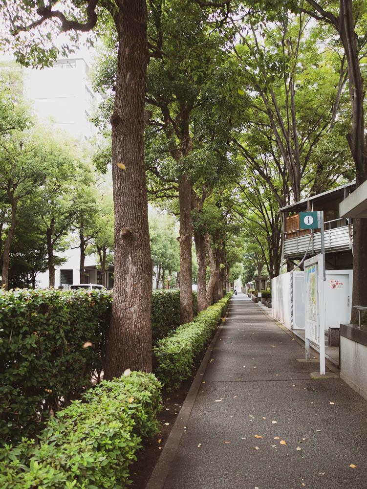 f:id:fukagawa1953:20200923072729j:plain