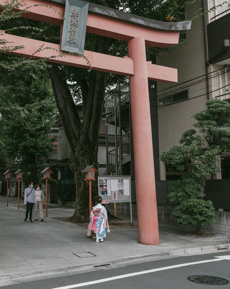 f:id:fukagawa1953:20201004205351j:plain