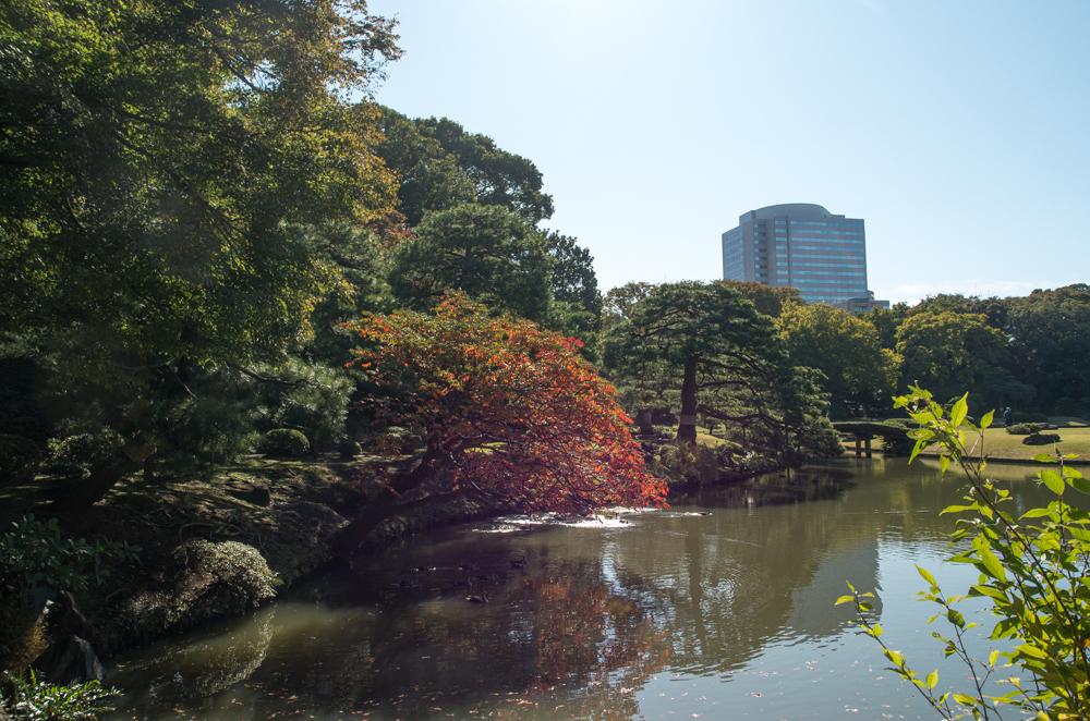 f:id:fukagawa1953:20201105135359j:plain