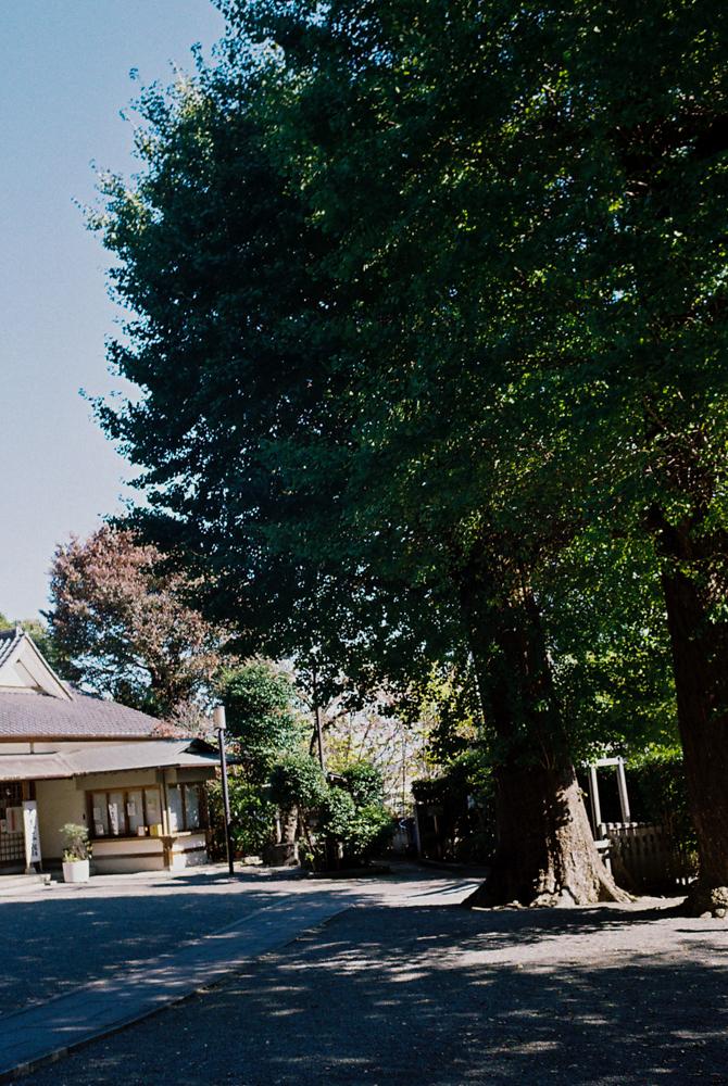 f:id:fukagawa1953:20201106133809j:plain