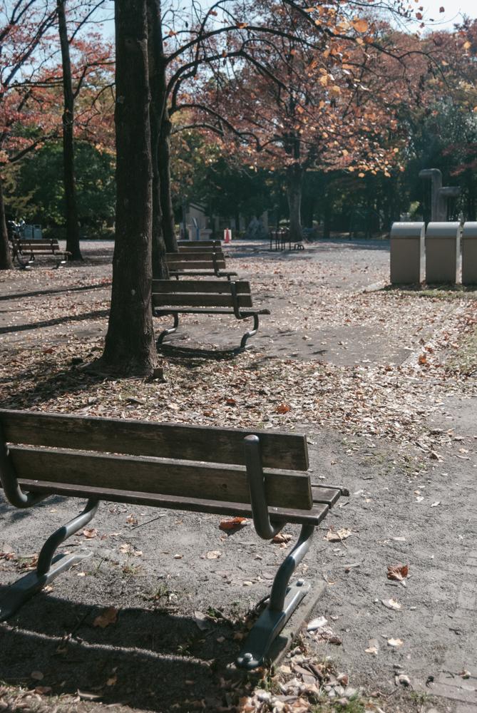 f:id:fukagawa1953:20201113125245j:plain