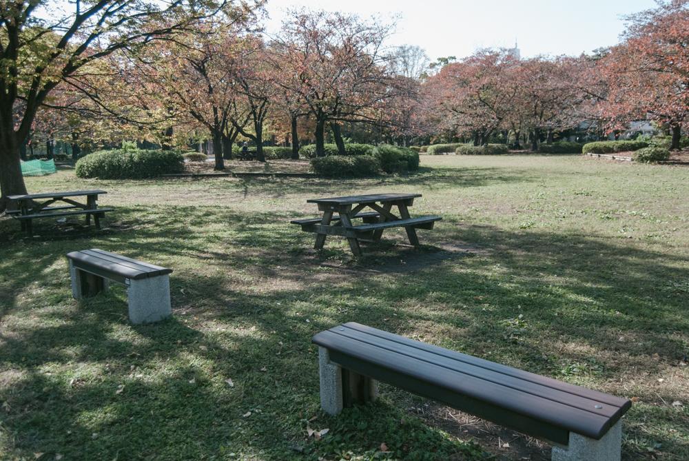 f:id:fukagawa1953:20201113125308j:plain