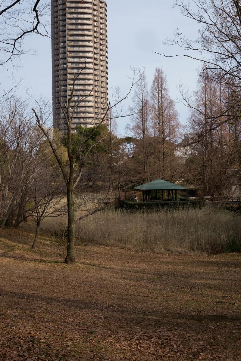 f:id:fukagawa1953:20210111153039j:plain
