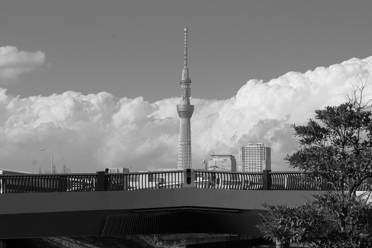 f:id:fukagawa1953:20210202152242j:plain