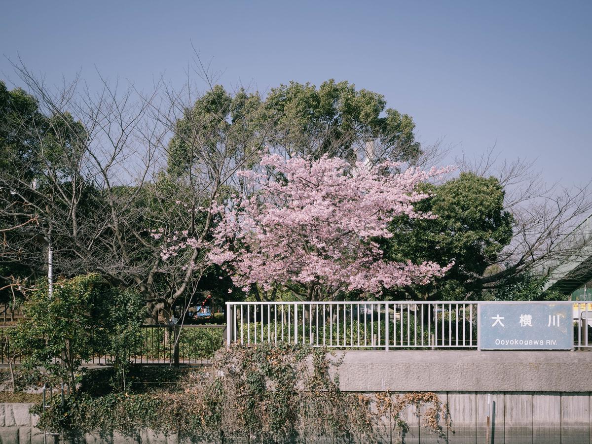f:id:fukagawa1953:20210222192254j:plain