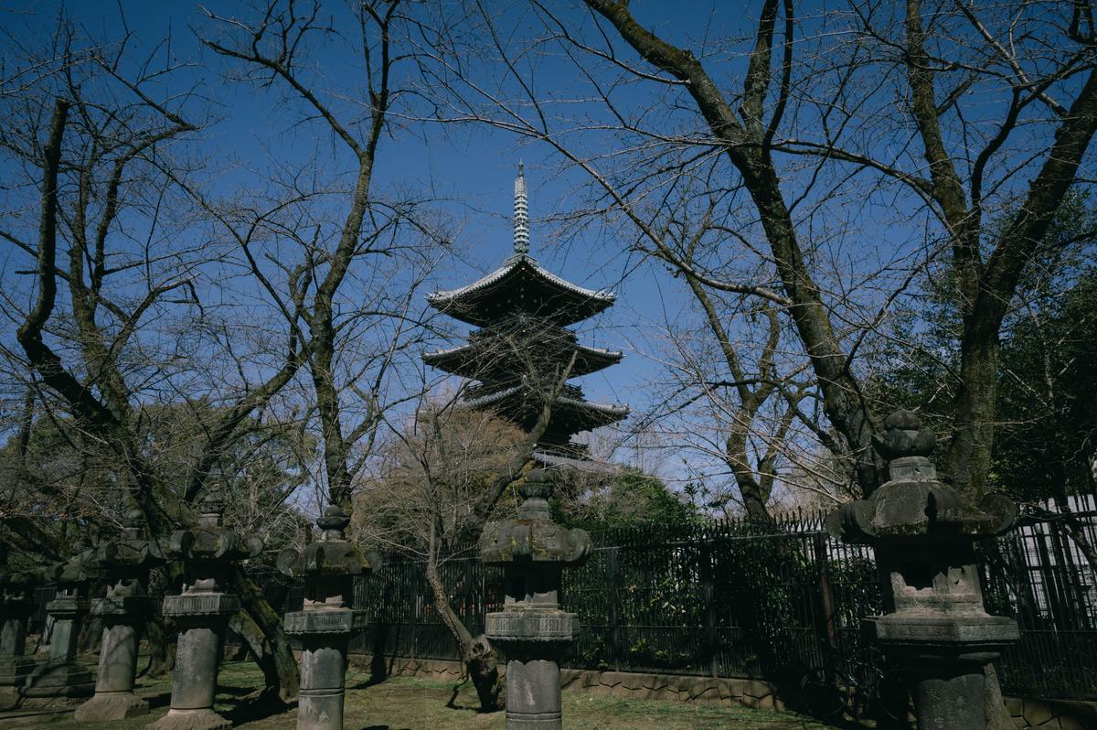 f:id:fukagawa1953:20210317063640j:plain