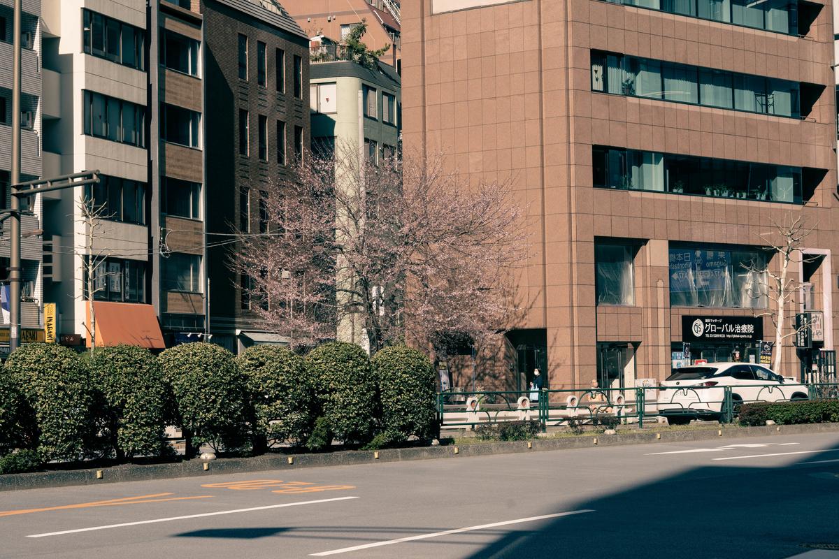 f:id:fukagawa1953:20210317194759j:plain