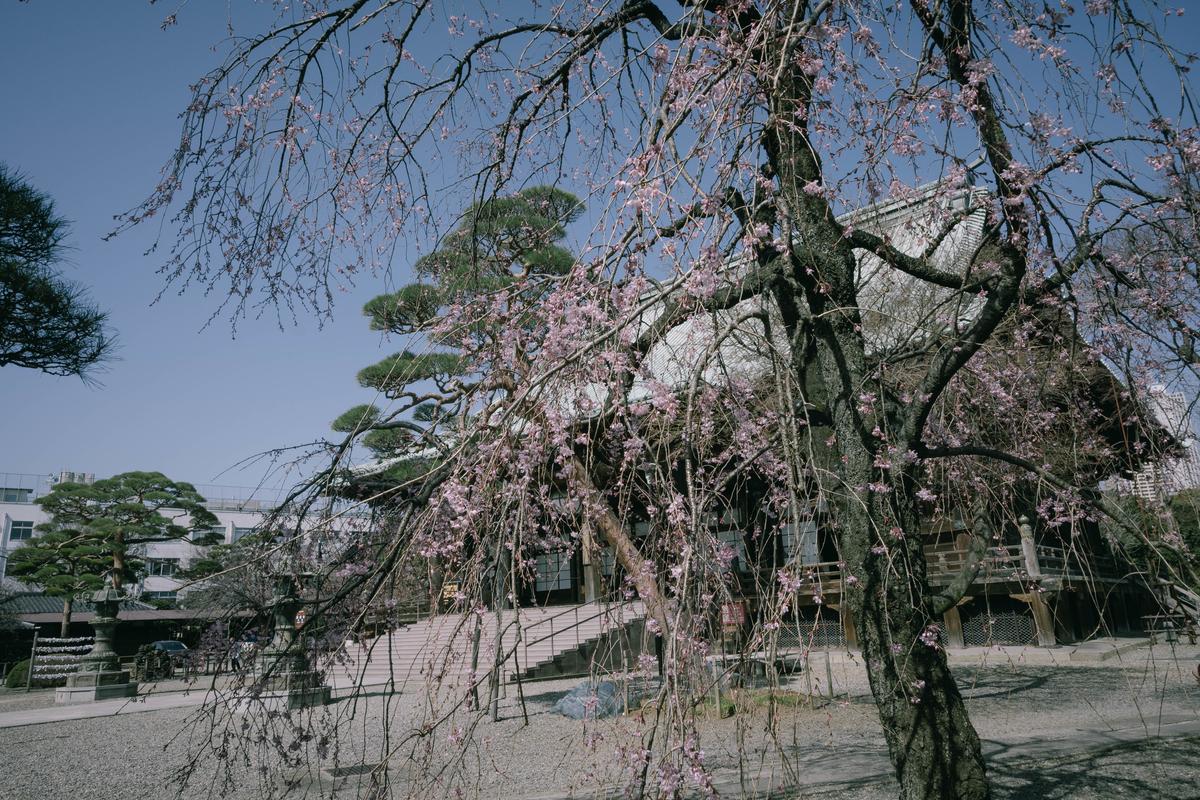 f:id:fukagawa1953:20210318114601j:plain