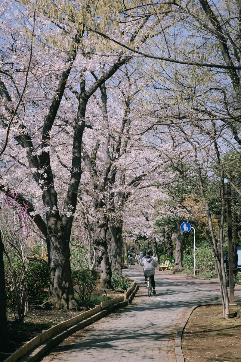 f:id:fukagawa1953:20210323120246j:plain
