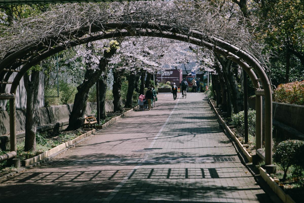 f:id:fukagawa1953:20210323120313j:plain