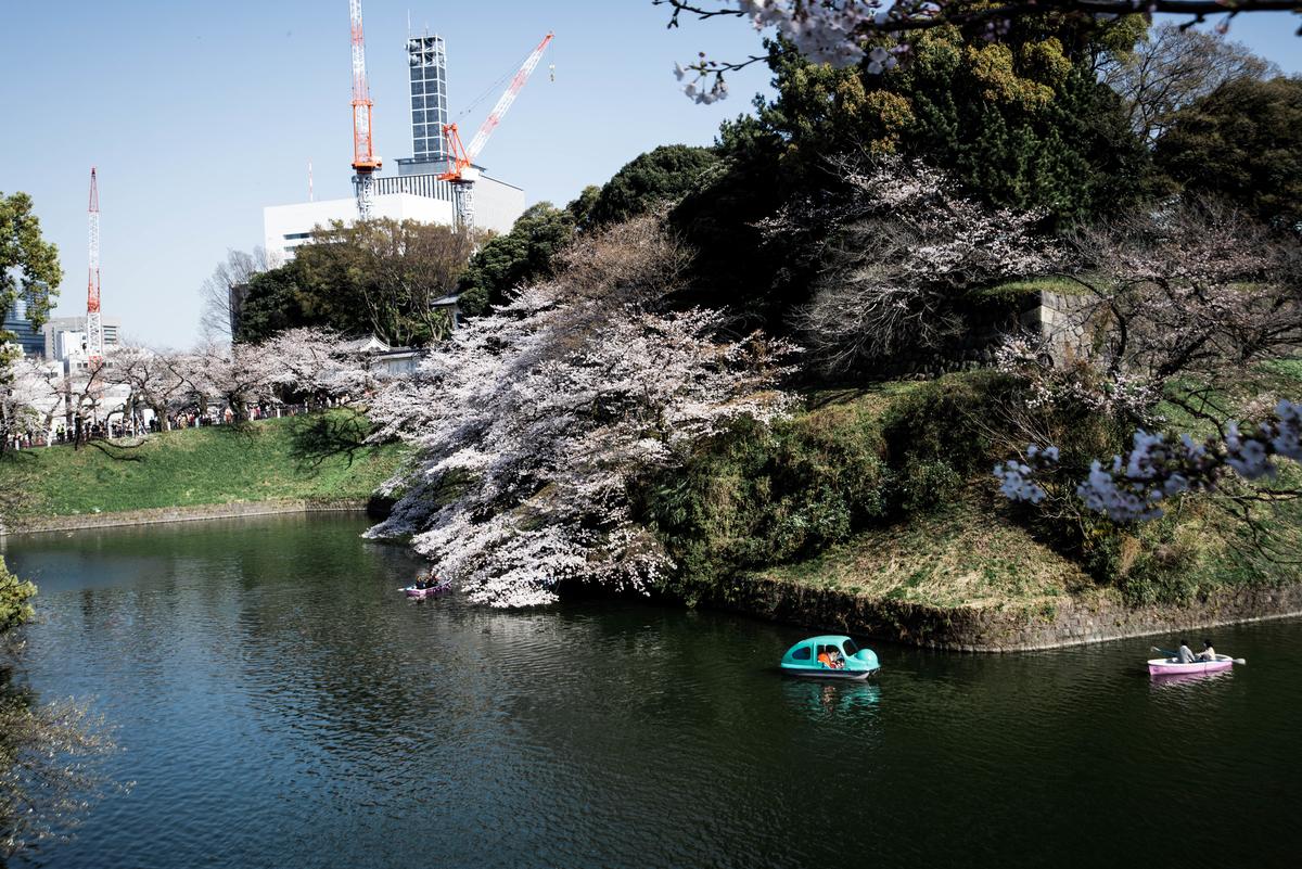 f:id:fukagawa1953:20210324061612j:plain