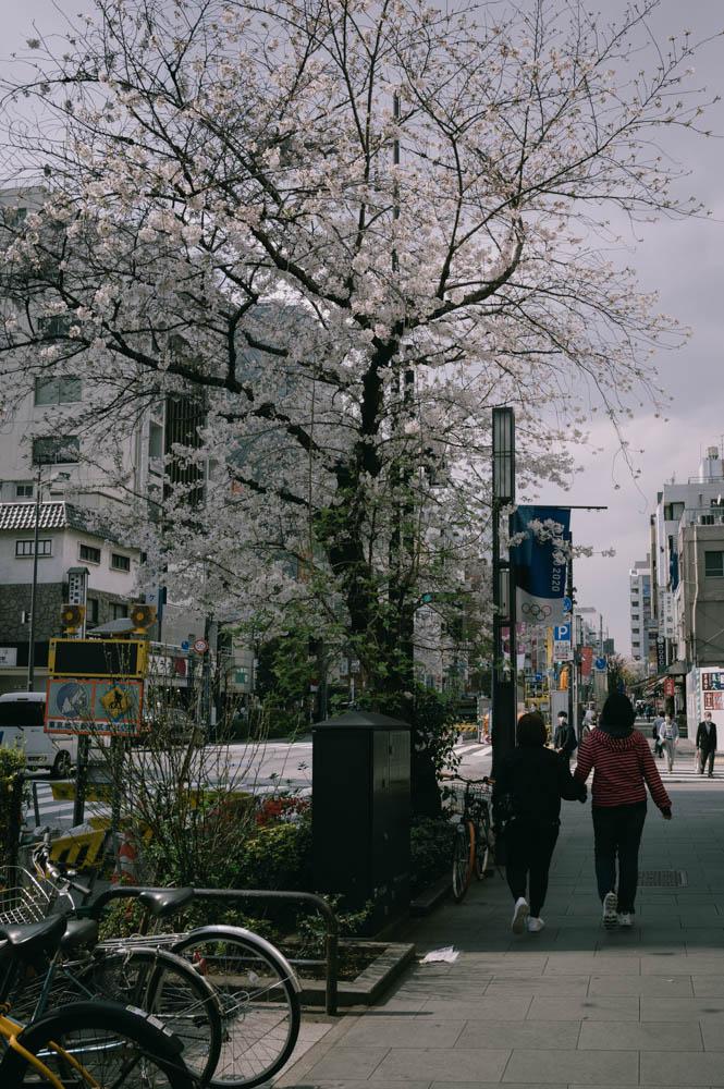 f:id:fukagawa1953:20210326161209j:plain