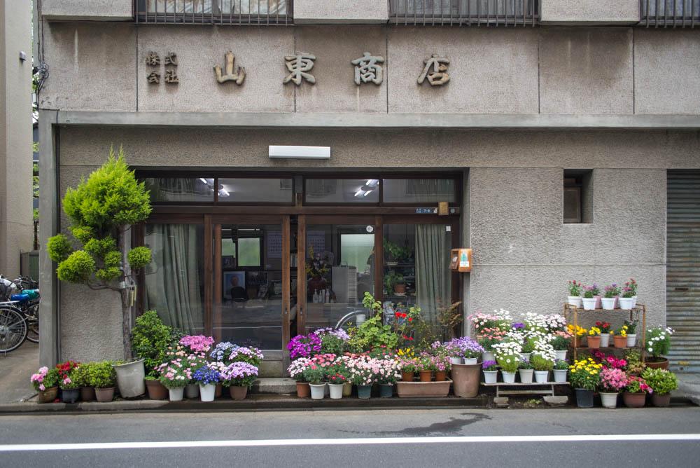 f:id:fukagawa1953:20210412063618j:plain