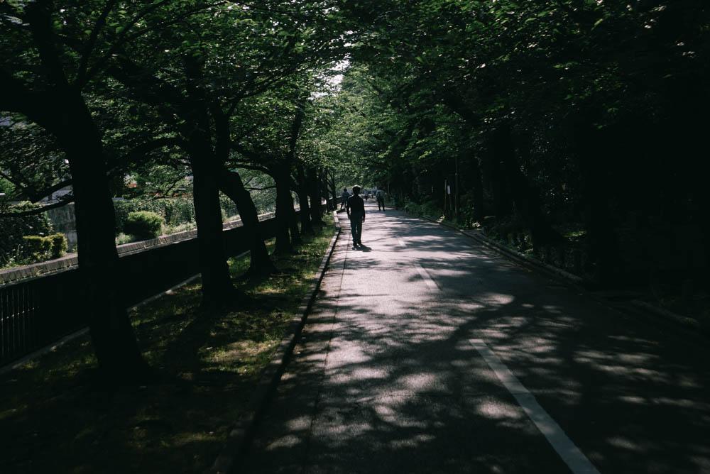 f:id:fukagawa1953:20210530191055j:plain