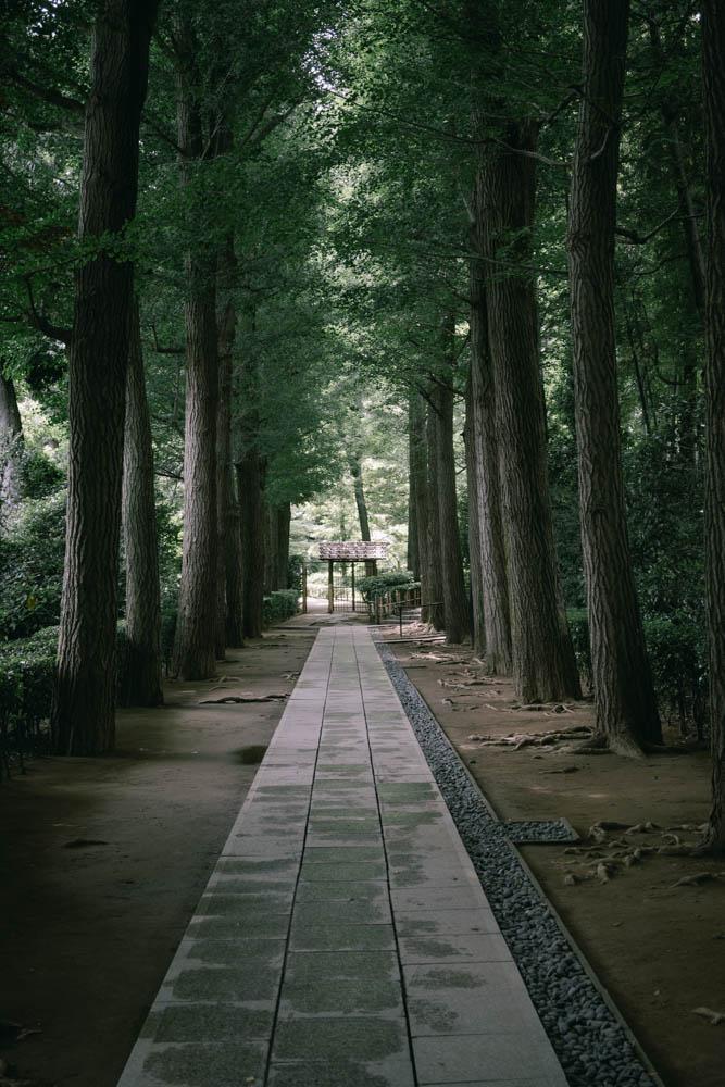 f:id:fukagawa1953:20210601063712j:plain
