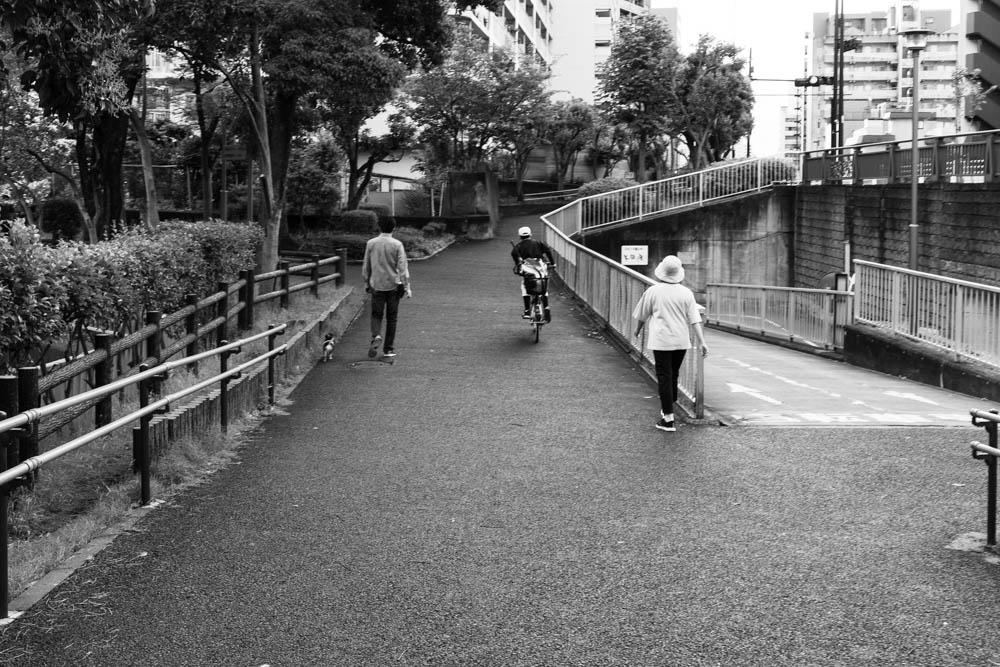 f:id:fukagawa1953:20210605064332j:plain