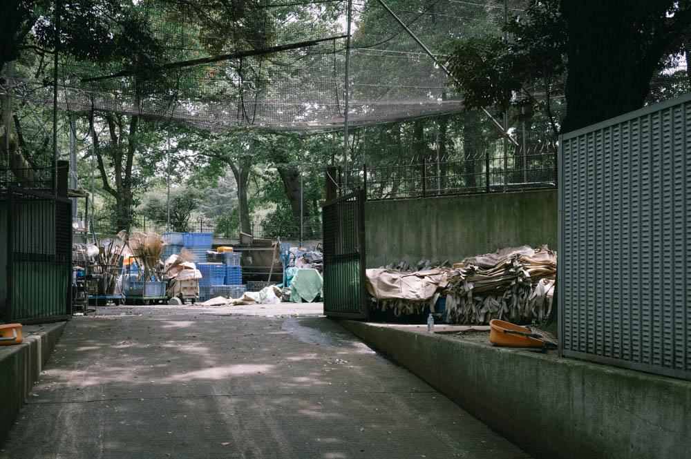 f:id:fukagawa1953:20210629194955j:plain