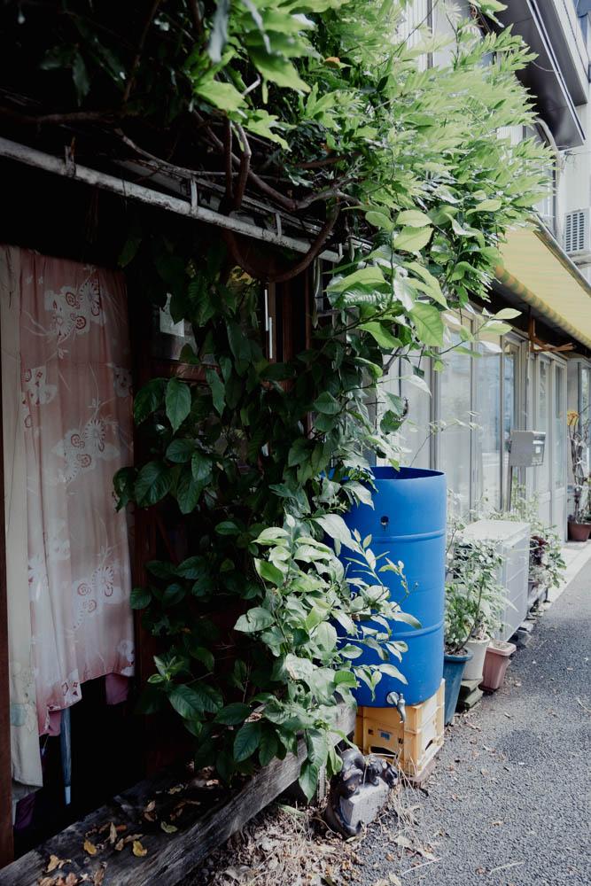 f:id:fukagawa1953:20210713095457j:plain
