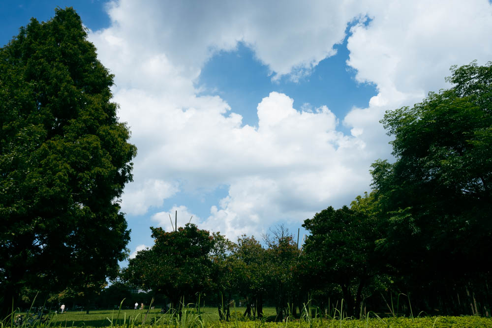 f:id:fukagawa1953:20210731181136j:plain