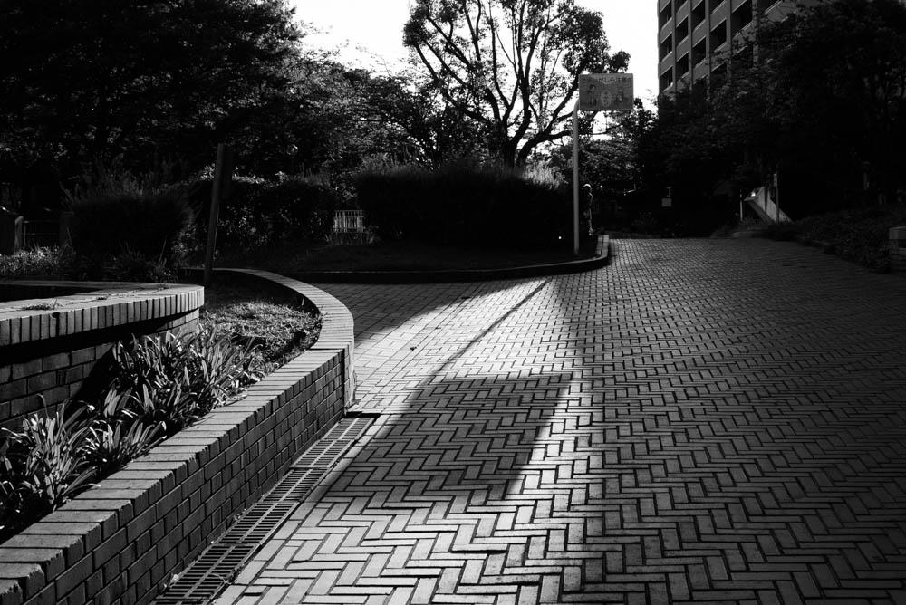 f:id:fukagawa1953:20210801175319j:plain