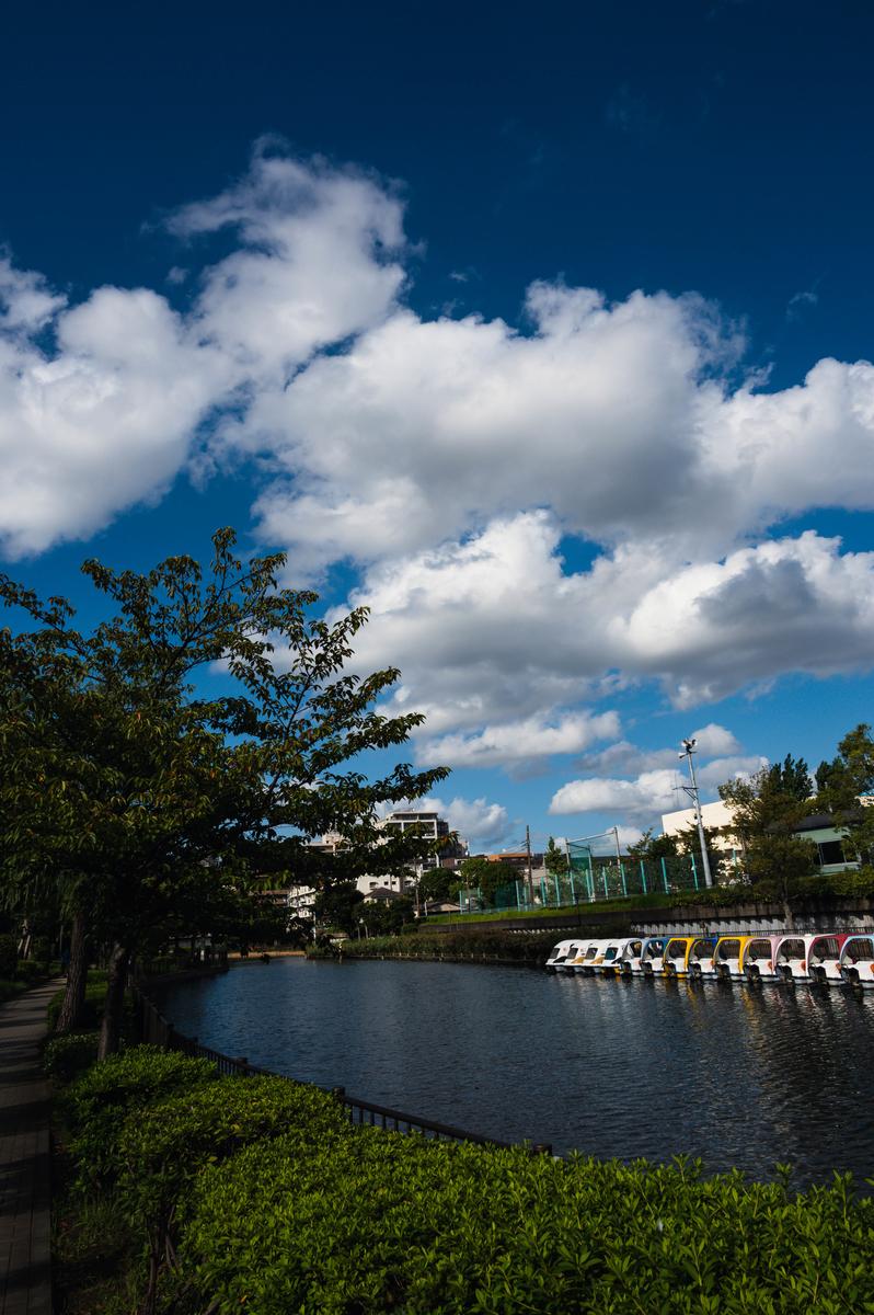 f:id:fukagawa1953:20210916173029j:plain