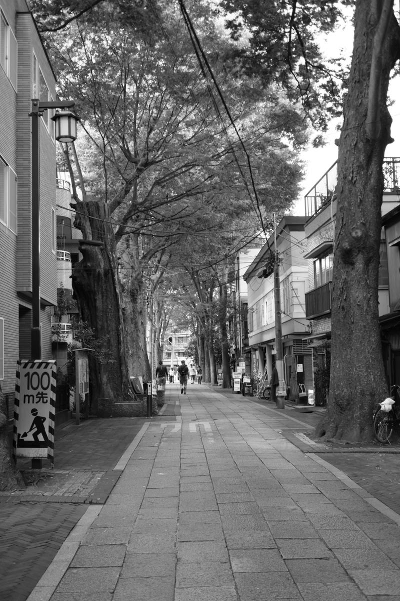 f:id:fukagawa1953:20210921134925j:plain