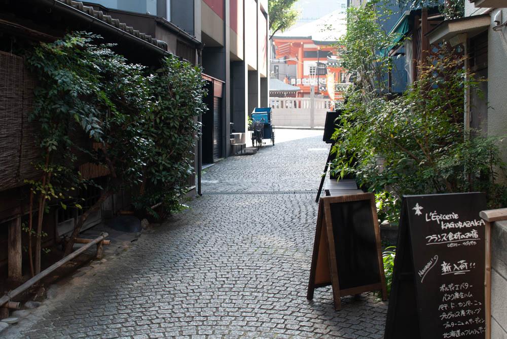 f:id:fukagawa1953:20211008153745j:plain