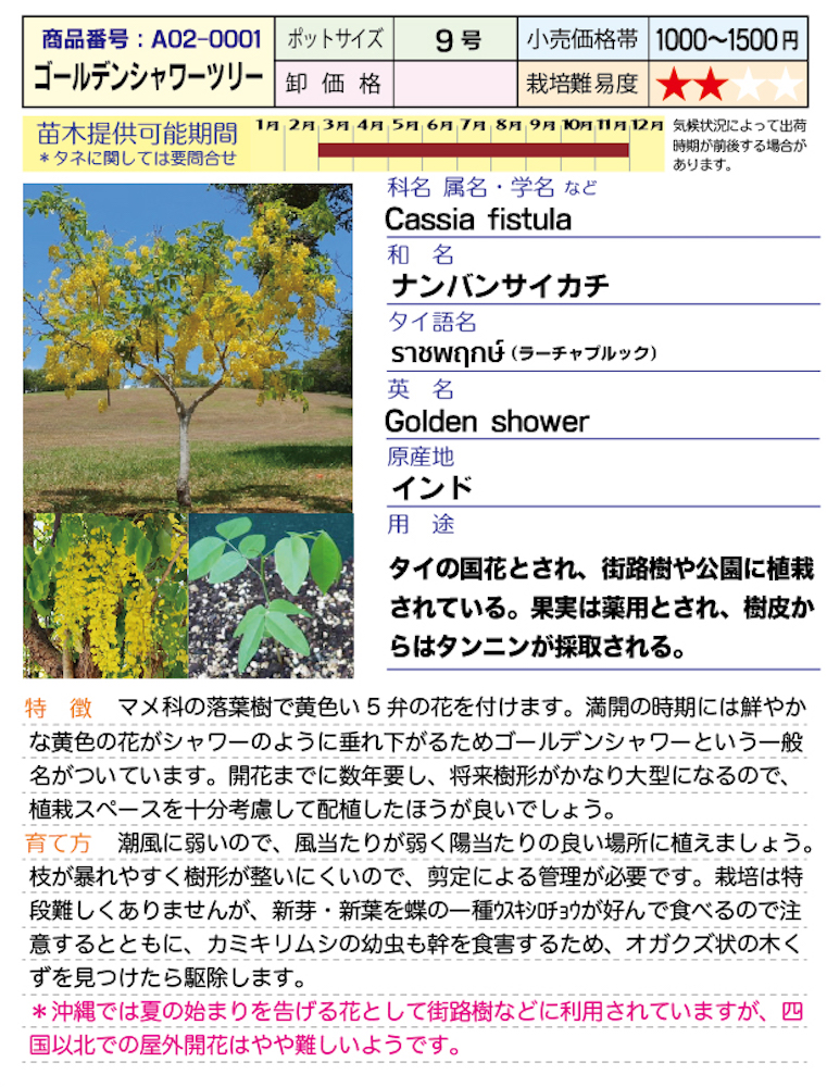 f:id:fukahiasia:20190314184345j:plain