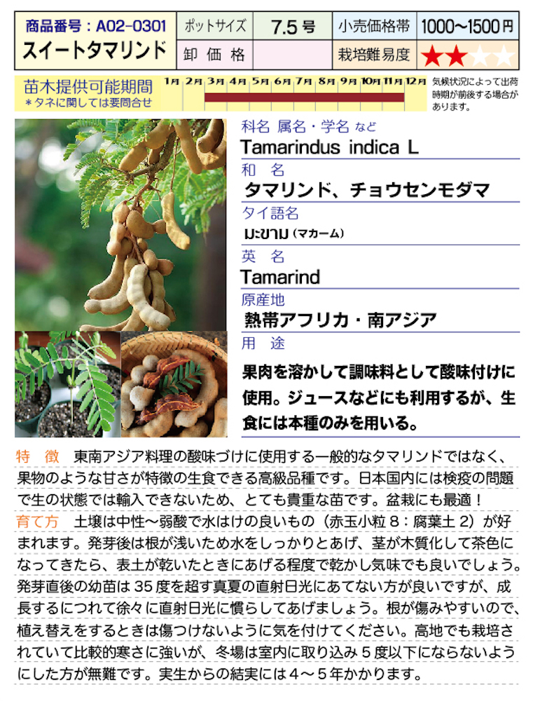 f:id:fukahiasia:20190314184415j:plain