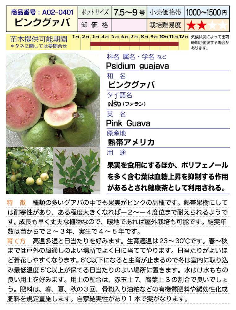 f:id:fukahiasia:20190314184418j:plain