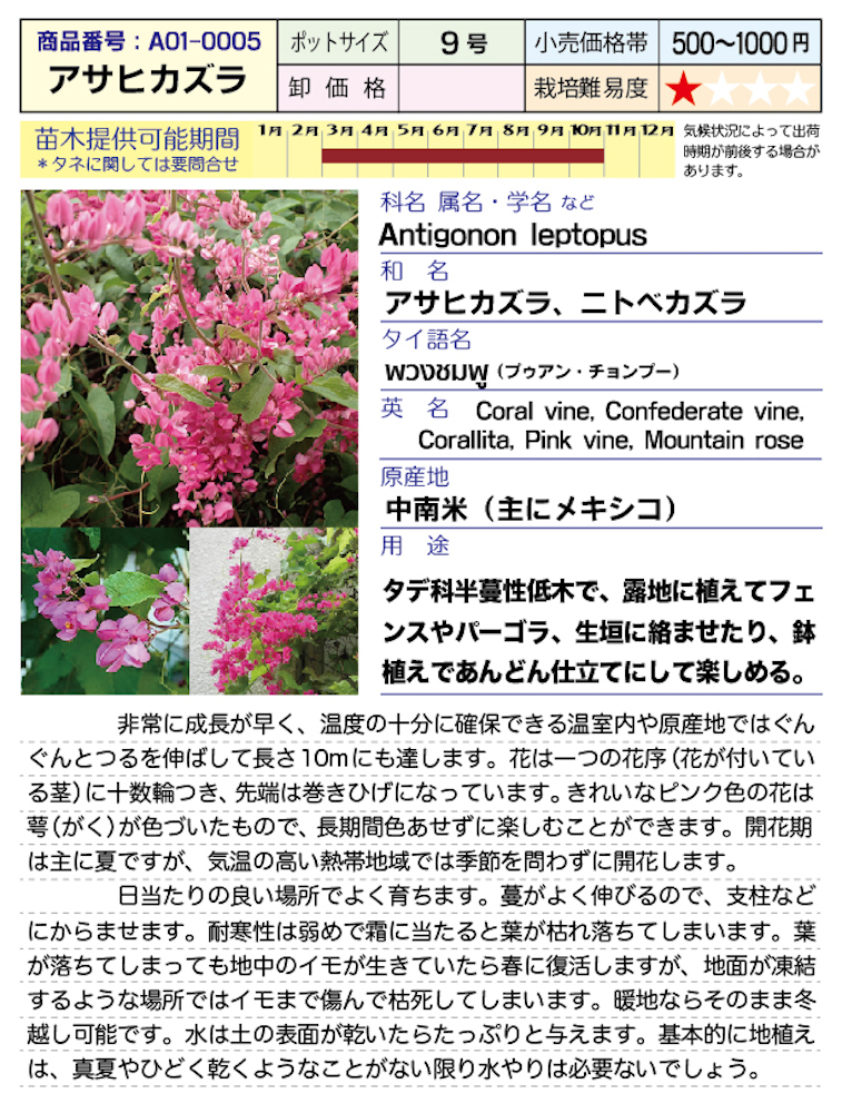 f:id:fukahiasia:20190314184435j:plain