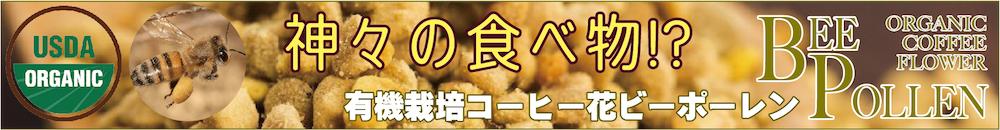 f:id:fukahiasia:20190331045608j:plain